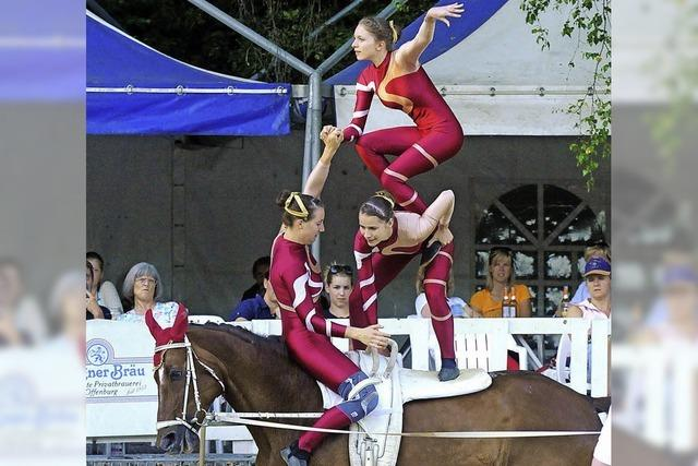 Akrobatik zu Pferde und fliegende Hunde