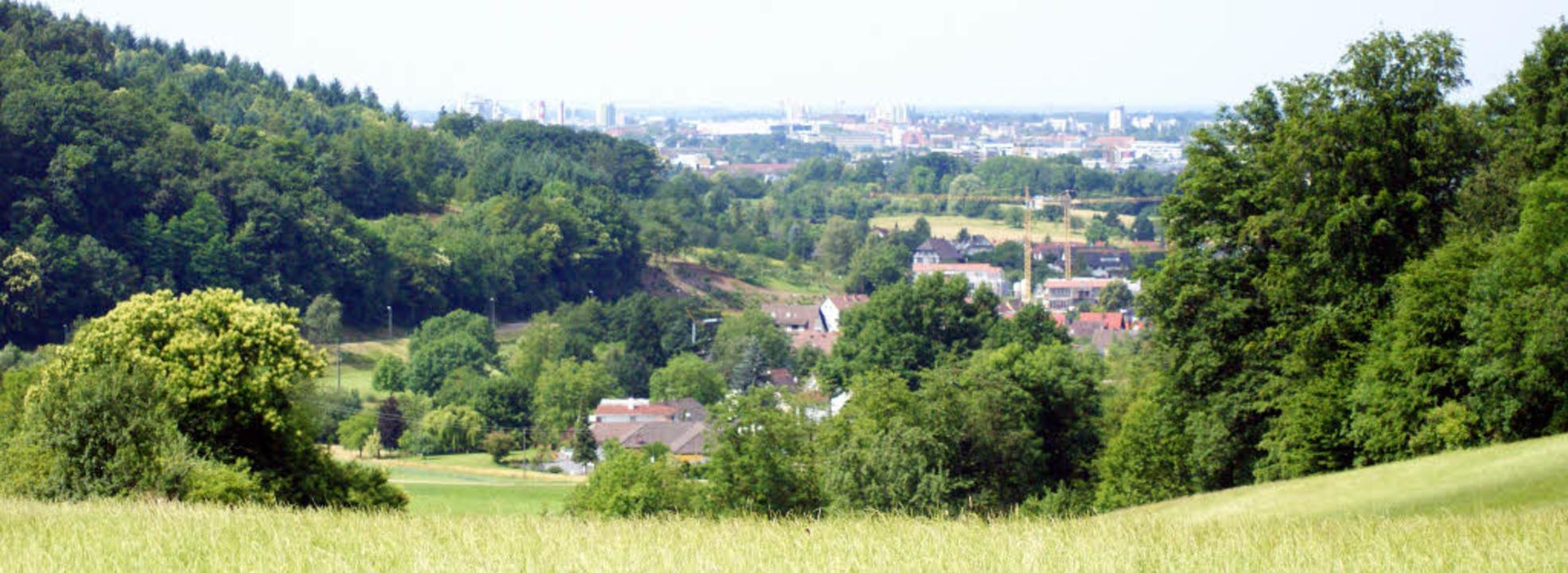 Ausblicke und gute Ausschilderungen be...en Wegen durch den Gundelfinger Forst.  | Foto: Claudia Warth