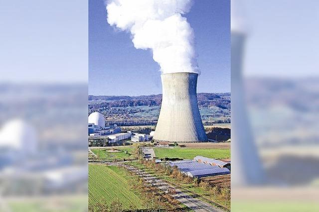 Kritik an der Atomaufsichtsbehörde