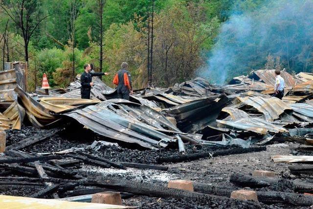 Feuer im Sägewerk: Ermittler suchen nach Brandursache