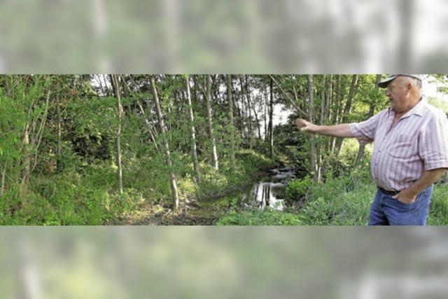 Landwirte als bezahlte Naturpfleger