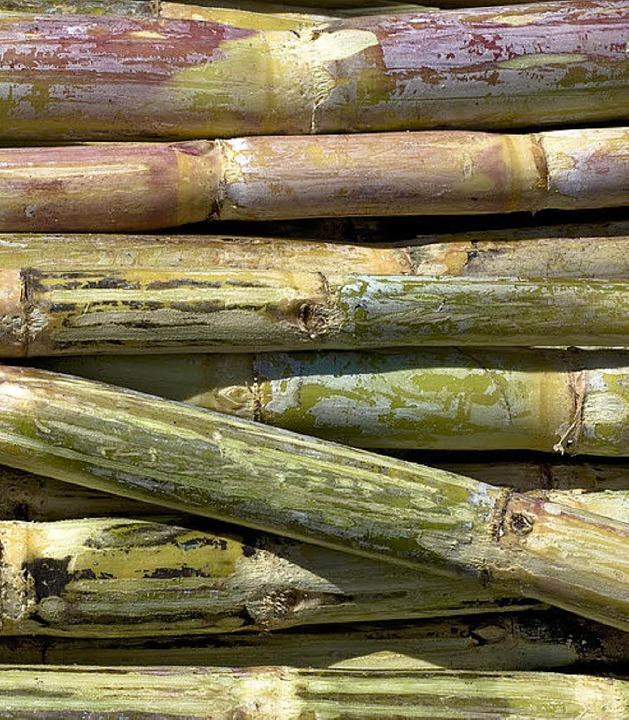 Wichtiges Anbaugut in Äthiopien: Zuckerrohr  | Foto: dpa (2)/fotolia