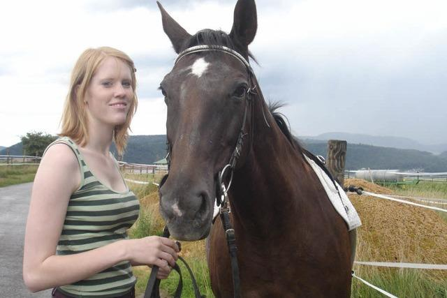 Verstümmeltes Pferd: Peta setzt 1000 Euro Belohnung aus