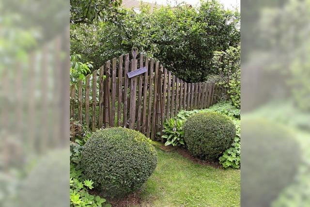 Gartentür öffnet sich jenseits des Rheins
