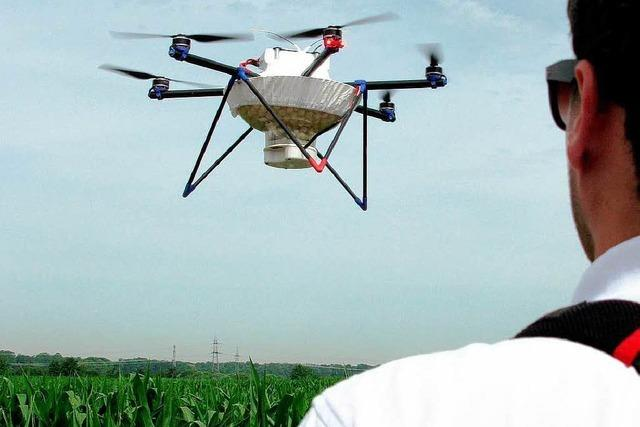 Herbolzheimer Bauer bekämpft Schädlinge per Drohne