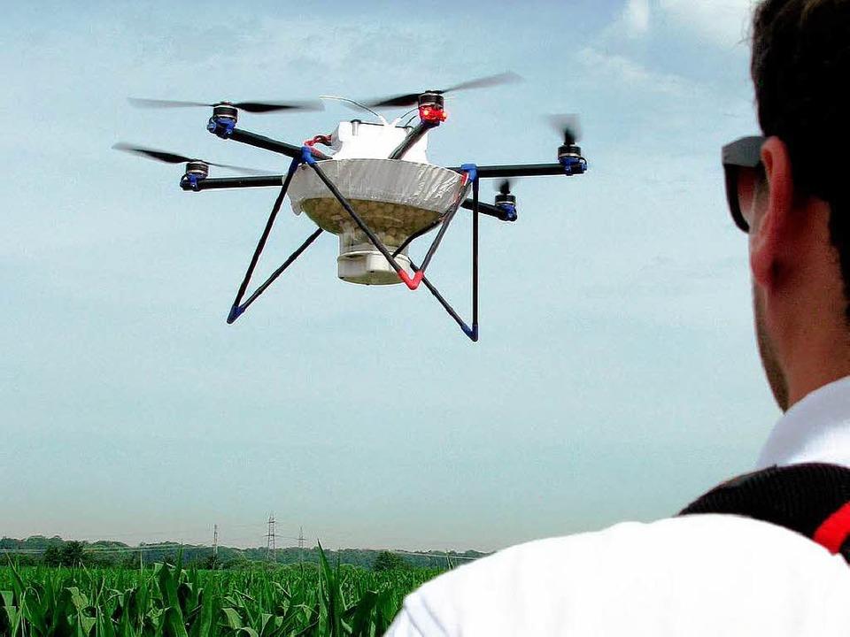 Mit Hightech gegen den Maiszünsler: De...hlupfwespenlarven über Maisfeldern ab.    Foto: dpa