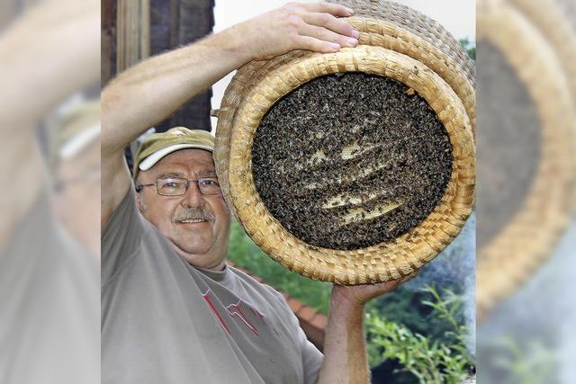 Die Bienenzucht hat hier eine lange Tradition