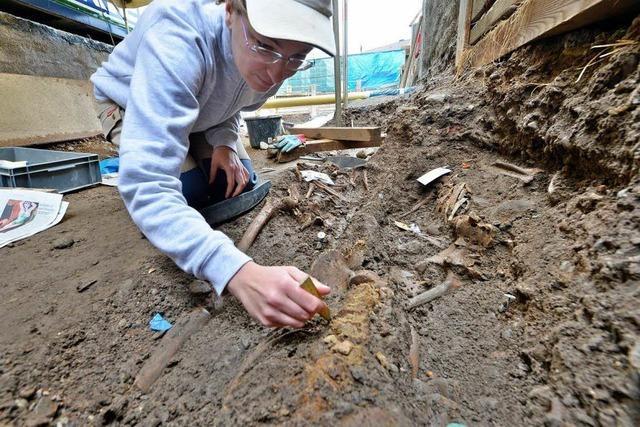 Archäologen finden 130 Skelette unter dem Münsterplatz