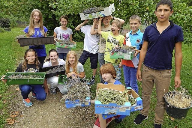 Garten statt Klassenzimmer