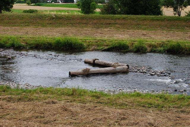 Schwache Noten für Bäche und Flüsse