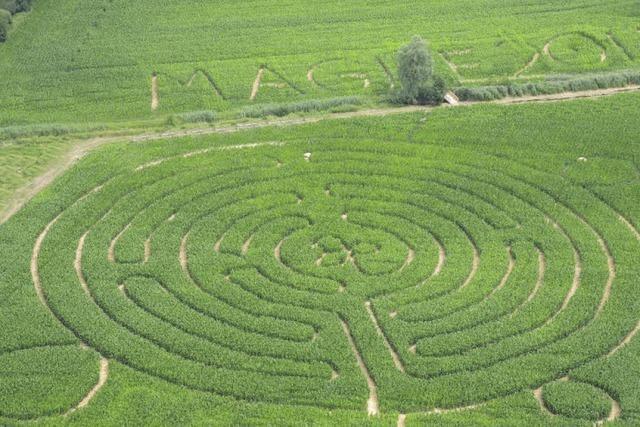 Maisfeldlabyrinth in Opfingen