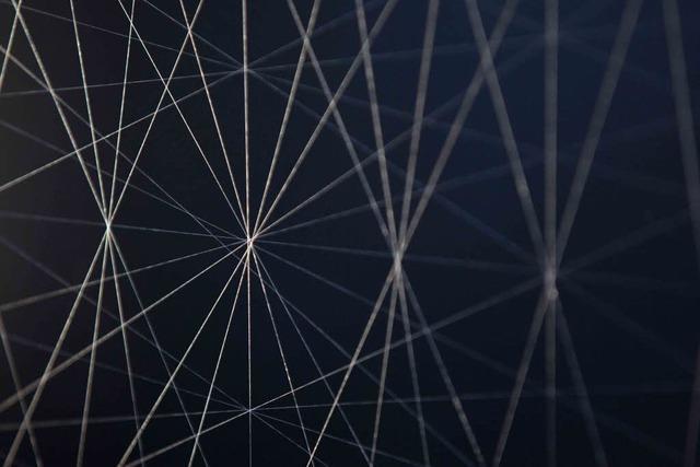 Wissenschaftler arbeiten daran, Spinnenseide zu gewinne