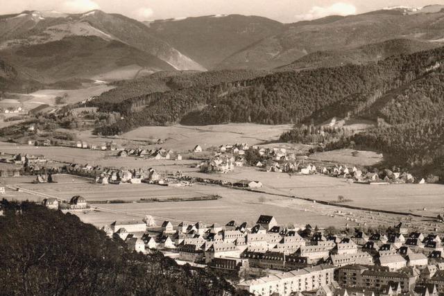 Freiburger Stadtteil Waldsee: Ein alter Eisweiher als Namenspate