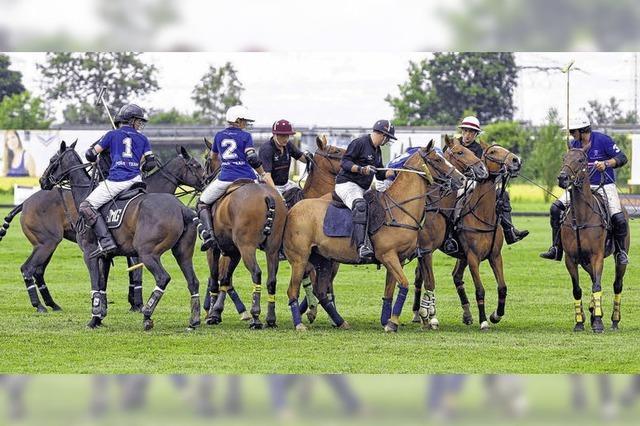 Polo-Turnier erobert Sympathie