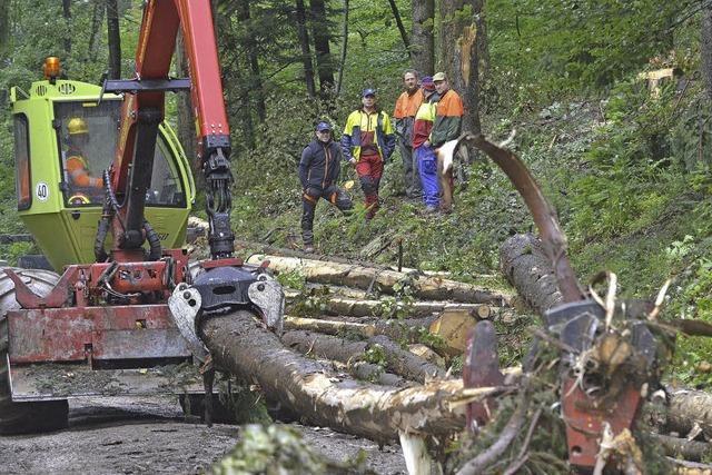 Forstamt probt Rettung bei Berufsunfällen im Wald