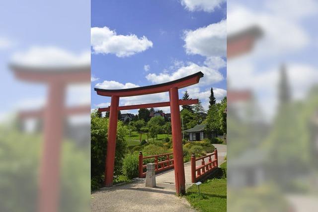 Sanierung im Japanischen Garten geht weiter - und kosten mehr als 50.000 Euro