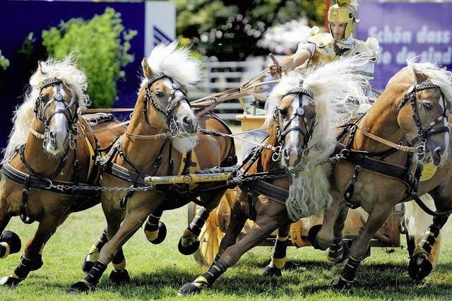 Eurocheval-Pferdemesse in Offenburg: Monty Roberts lässt grüßen