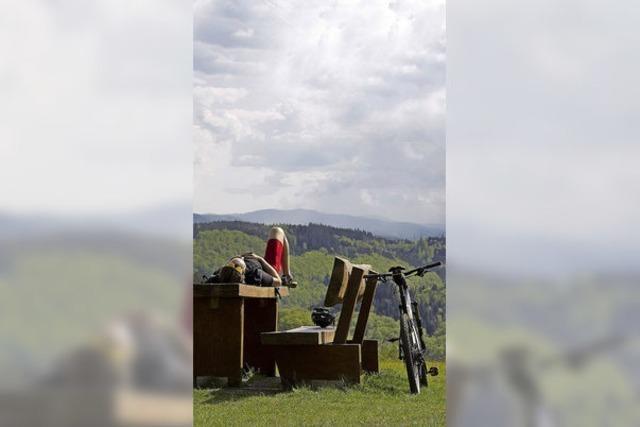 Der Schwarzwald boomt als Ferienregion