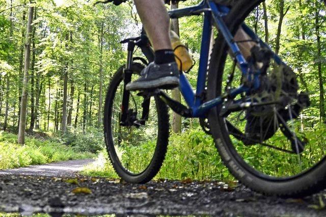Landratsamt duldet Mountainbike-Strecke im Hexenwäldle