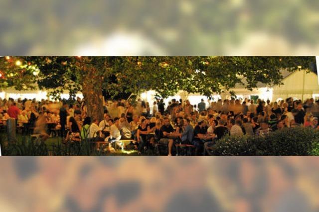Fröhliche Party im idyllischen Park
