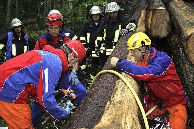 Bergwacht und Feuerwehr arbeiten gut zusammen