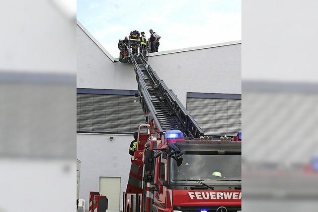 Sturz von Leiter auf dem Dach