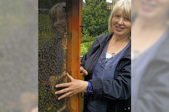 Honigertrag hängt stark vom Volk ab