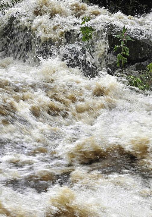 Die Wassermassen in Zaum halten, dazu ...uch der Hochwasserschutz im Hexental.   | Foto: Thomas Kunz