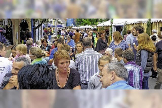 Jede Menge Besucher beim Stadtbächlifest