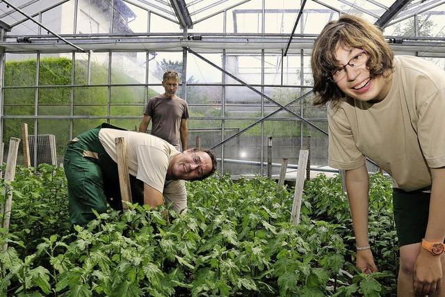 Behinderte arbeiten als Gärtner und Floristen