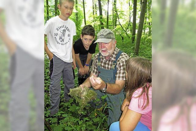 Schüler sammeln Wissen über die Natur