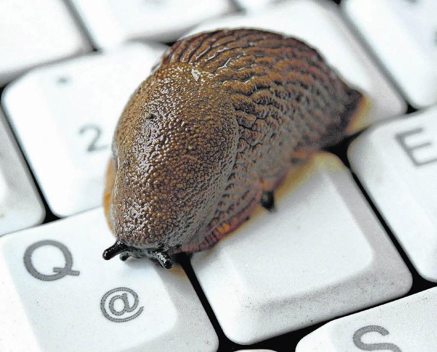 Langsam war gestern: Bis zum Jahr 2016...Bräunlingen schnelles Internet geben.   | Foto: dpa