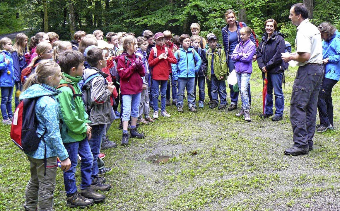 Die Premiere ist geglückt: Auch 2015  soll es wieder eine Waldolympiade geben.   | Foto: Bildungsregion Ortenau