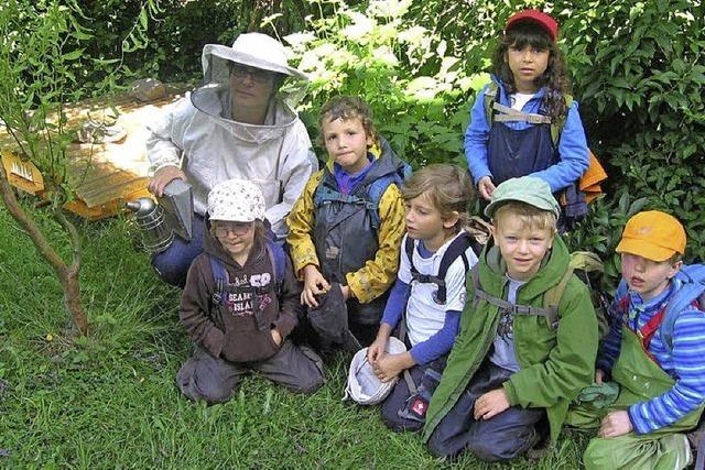 Dank an fleißige Bienen