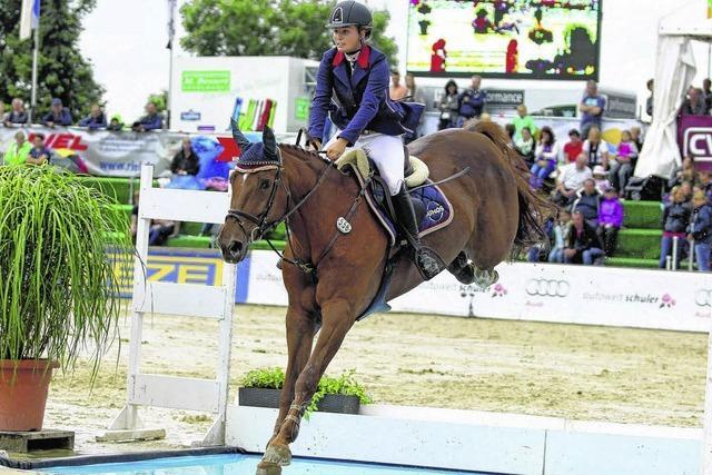 Fest der Pferde: Ein tierisches Sportwochenende