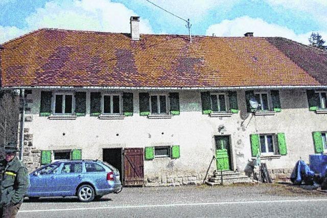 Neues Dach für Waldhaus
