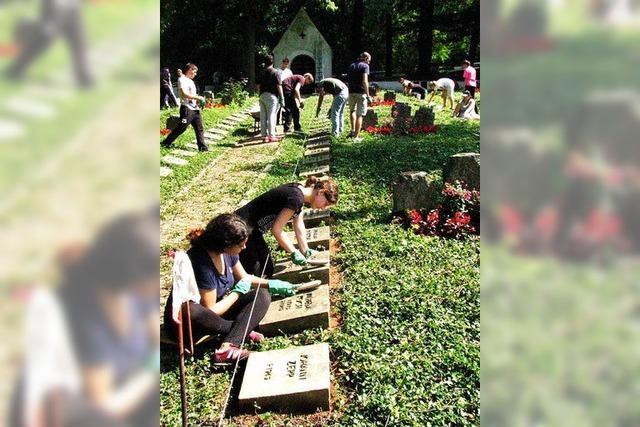 Jugendliche aus ganz Europa pflegen gemeinsam Kriegsgräber