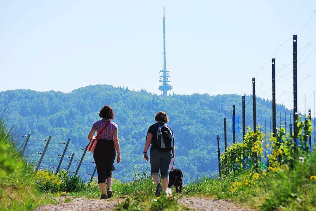 Viele Gäste kommen zum Wandern an den ...zahlen jedoch relativ deutlich zurück.  | Foto: Benjamin Bohn