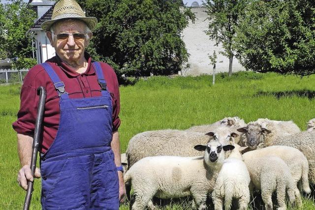 Von toller Wolle und kessem Nadelspiel