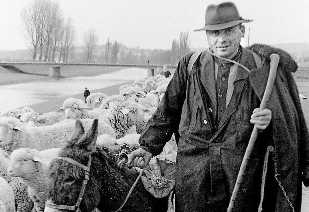 Mit Esel und Herde: Ein Schäfer an der Elz     Foto: Armin E. Möller