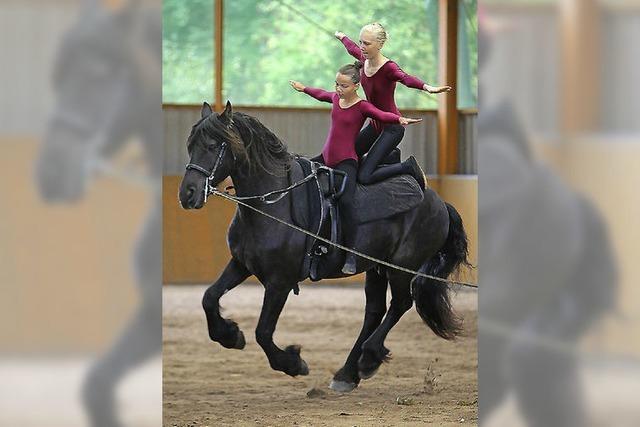 Die Welt der Pferde ist zu Gast in Bonndorf-Ebnet