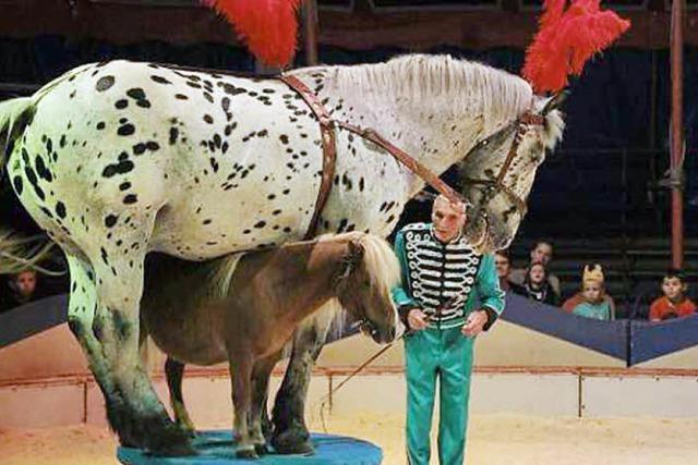 Circus Kaiser in Freiburg-Littenweiler