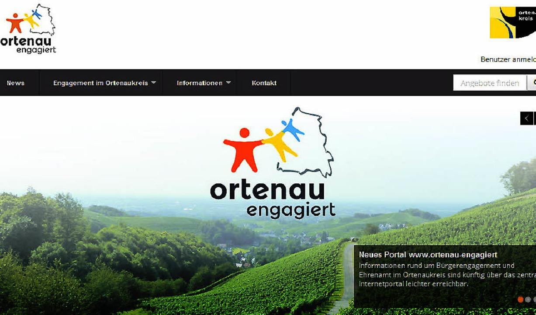 Das neue Ehrenamt-Portal des Landratsamtes     Foto: landratsamt