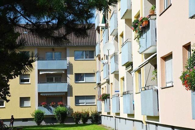 Wohnungsmarkt Offenburg: Macht sich eine Heuschrecke breit?