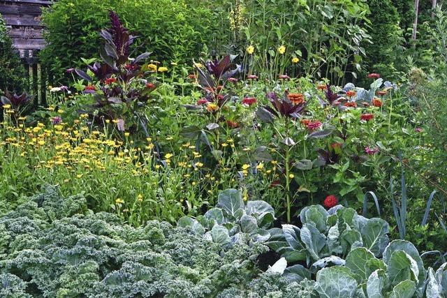 """Das Buch """"Omas Gärten"""" erzählt von Gartenleidenschaften"""