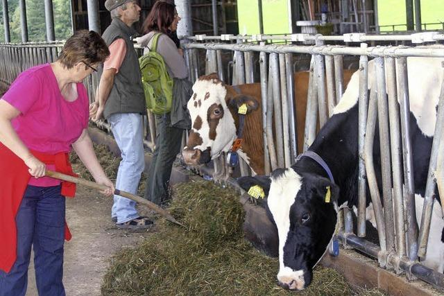 Die Milch macht's nicht mehr alleine