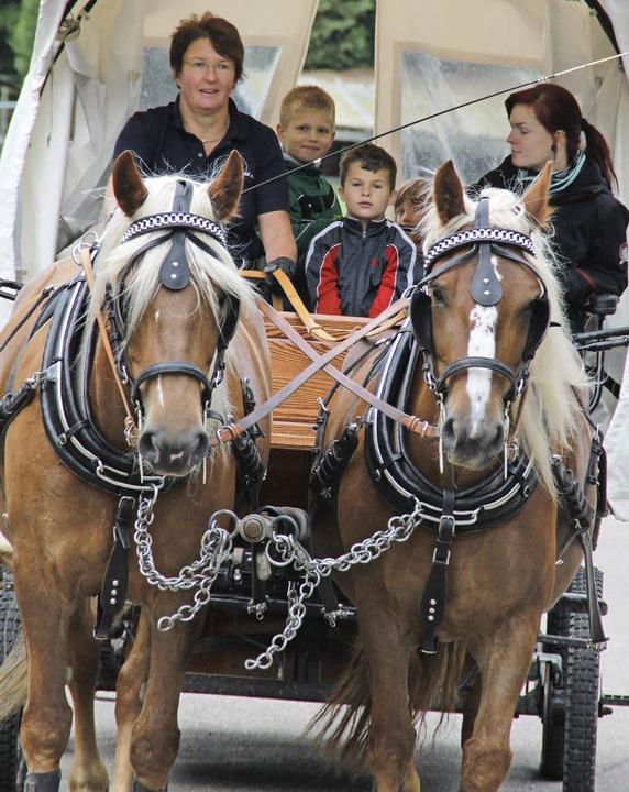 Ein Tag  mit den Pferden Illie und Alf...dem aktuellen Spieldorf-Ferienprogramm  | Foto: Moritz Lehmann