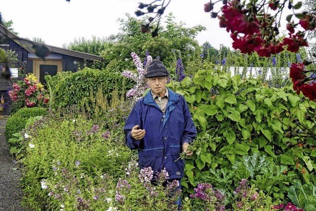Blütezeit im Kleingartenparadies