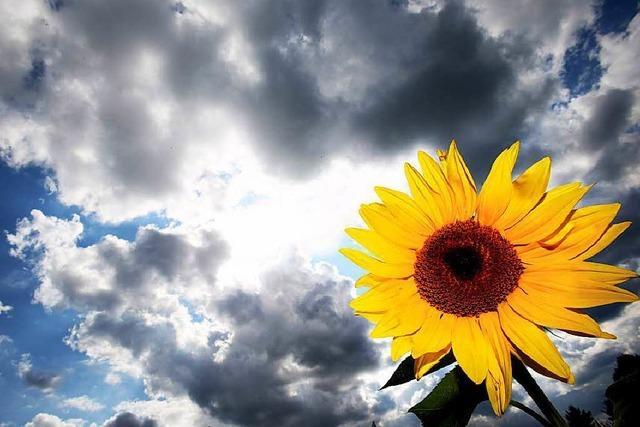 Wechselhafter Sommer – ein Zeichen für den Klimawandel?