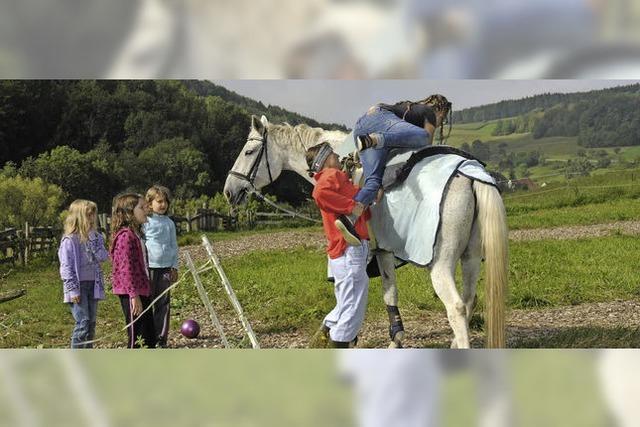Turnen auf dem Rücken des Pferdes